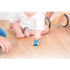 Sanitize Hygienisches Parkett-Reiniger 1 Liter